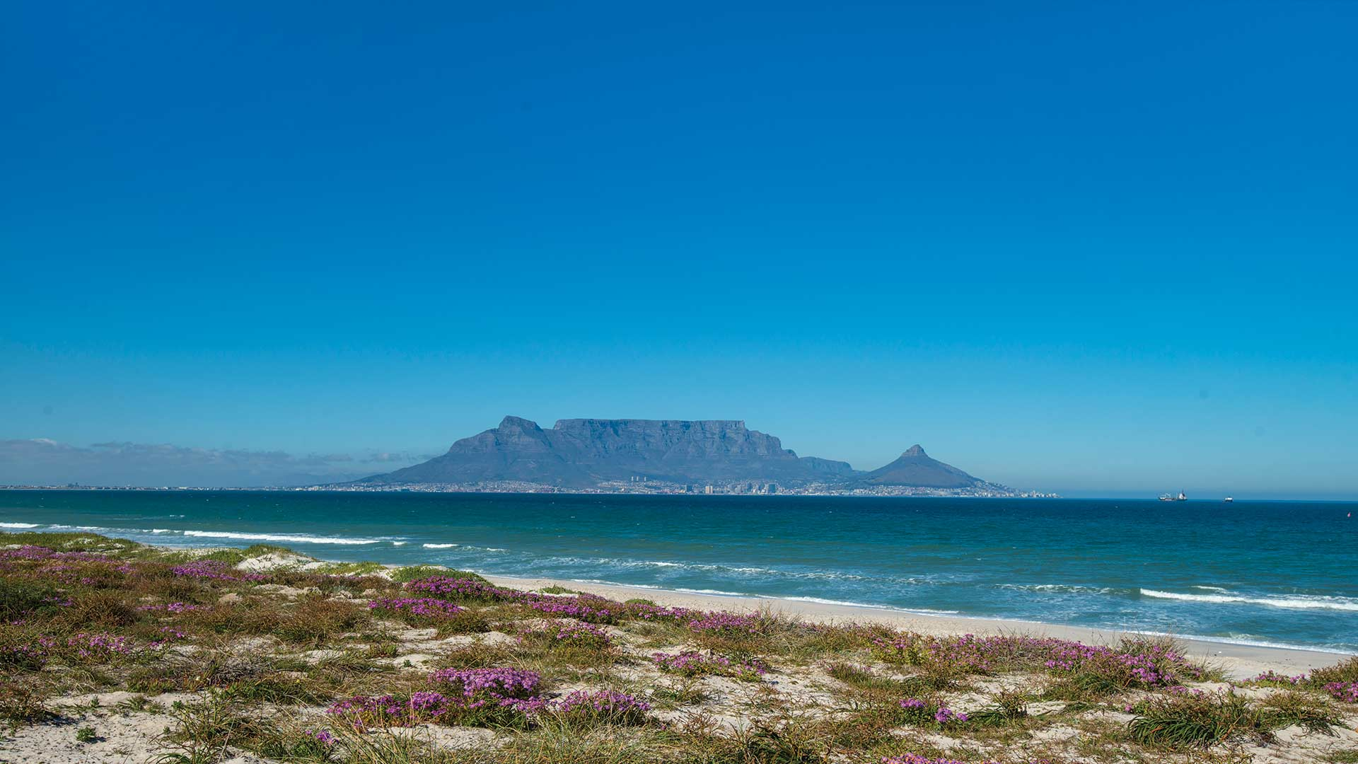 YGo-Table-Mountain-Cape-Town-Tours